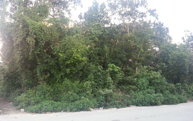 Foto de terreno habitacional en venta en, tulum centro, tulum, quintana roo, 1078573 no 01
