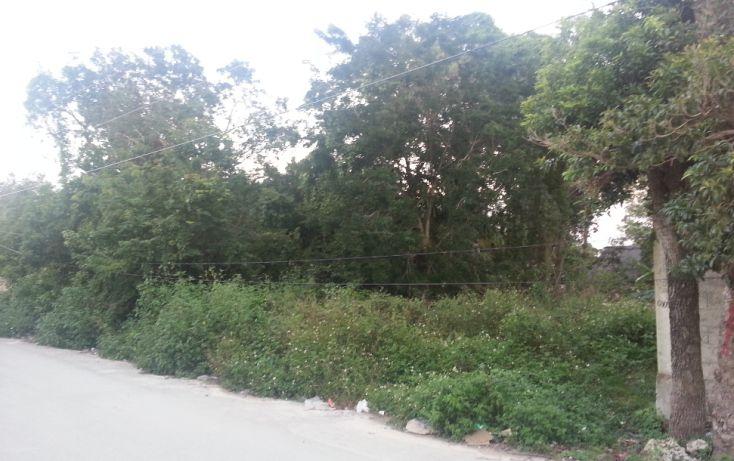 Foto de terreno habitacional en venta en, tulum centro, tulum, quintana roo, 1078573 no 04