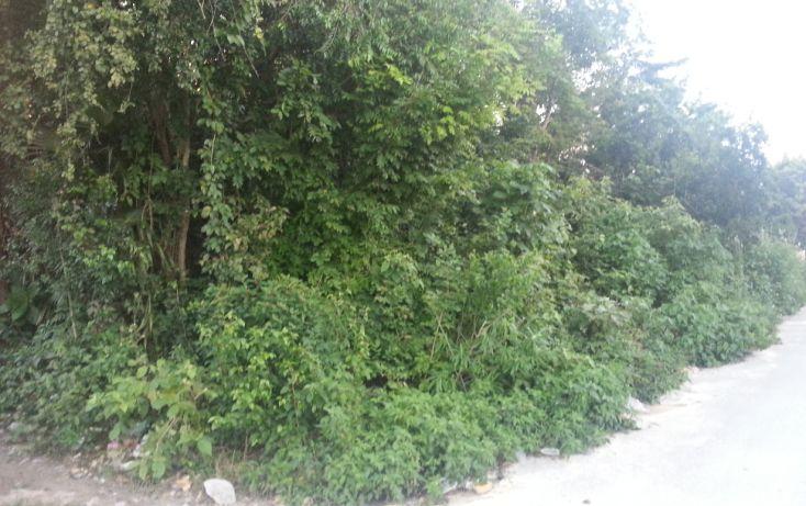 Foto de terreno habitacional en venta en, tulum centro, tulum, quintana roo, 1078573 no 05