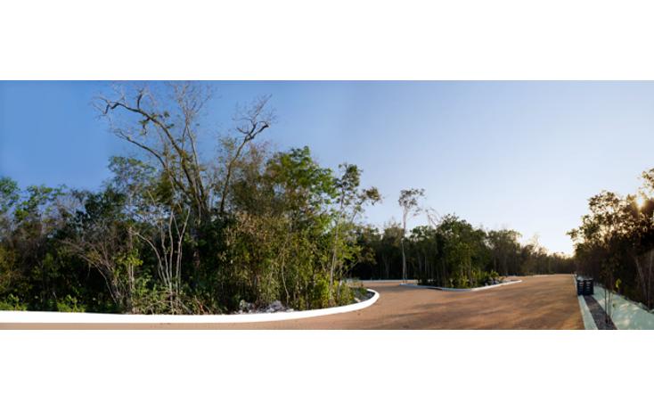 Foto de terreno habitacional en venta en  , tulum centro, tulum, quintana roo, 1128457 No. 02