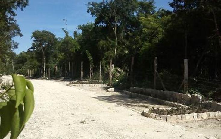 Foto de terreno habitacional en venta en  , tulum centro, tulum, quintana roo, 1322917 No. 02