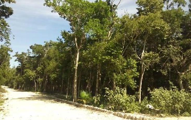 Foto de terreno habitacional en venta en  , tulum centro, tulum, quintana roo, 1322917 No. 04