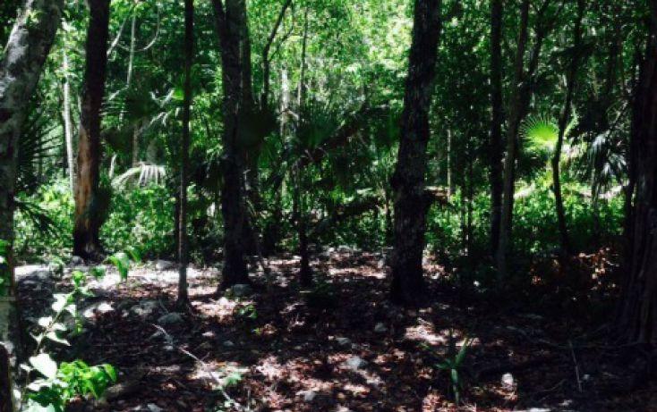 Foto de terreno habitacional en venta en, tulum centro, tulum, quintana roo, 1327871 no 01