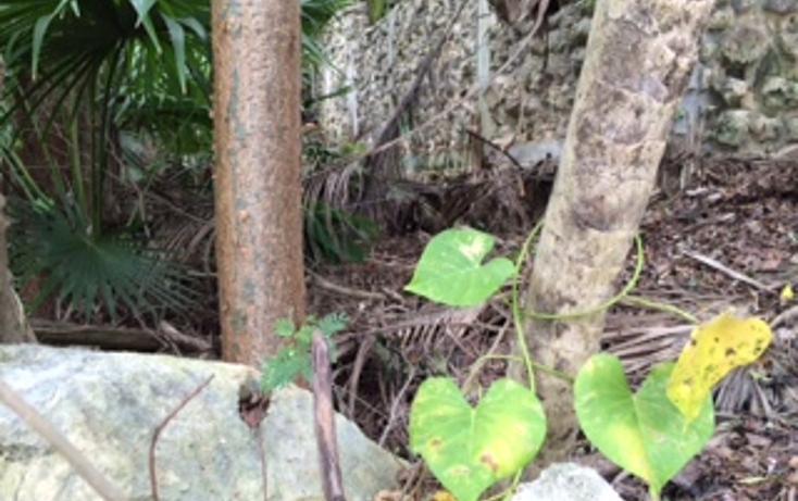 Foto de terreno habitacional en venta en  , tulum centro, tulum, quintana roo, 1625696 No. 08