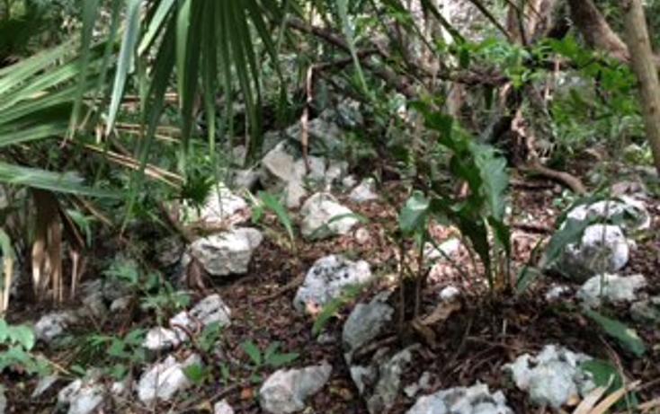Foto de terreno habitacional en venta en  , tulum centro, tulum, quintana roo, 1625696 No. 15