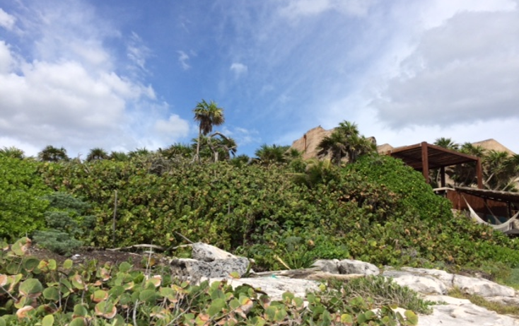 Foto de terreno habitacional en venta en  , tulum centro, tulum, quintana roo, 1625696 No. 21