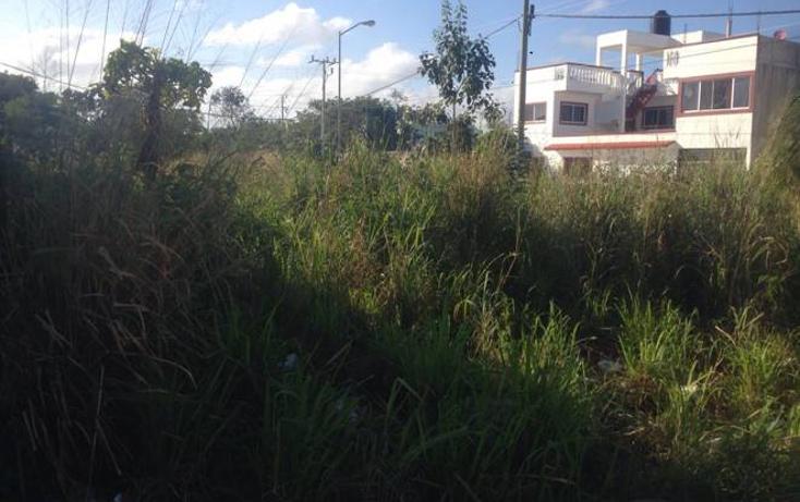 Foto de terreno habitacional en venta en  , tulum centro, tulum, quintana roo, 1631168 No. 02