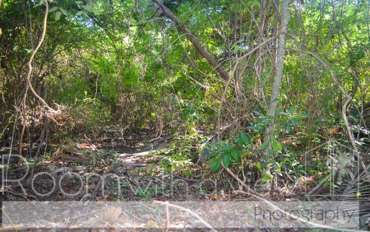 Foto de terreno habitacional en venta en, tulum centro, tulum, quintana roo, 1655425 no 02
