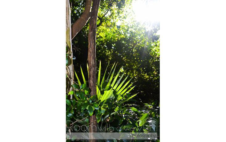 Foto de terreno habitacional en venta en, tulum centro, tulum, quintana roo, 1655425 no 04