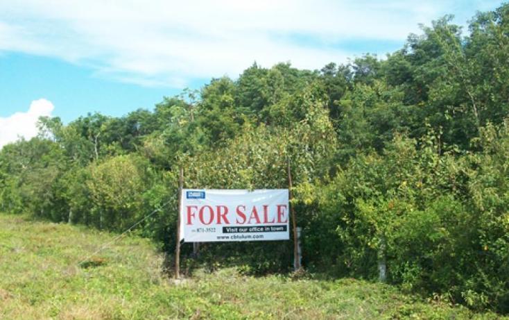 Foto de terreno comercial en venta en  , tulum centro, tulum, quintana roo, 1848278 No. 04