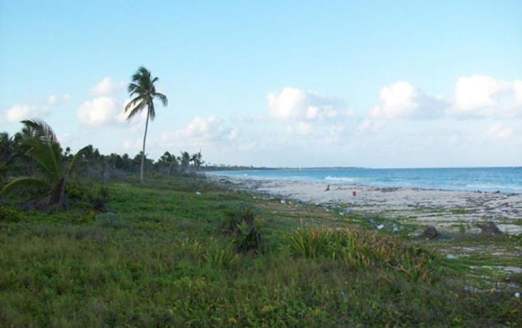Foto de terreno comercial en venta en - , tulum centro, tulum, quintana roo, 1848364 No. 07
