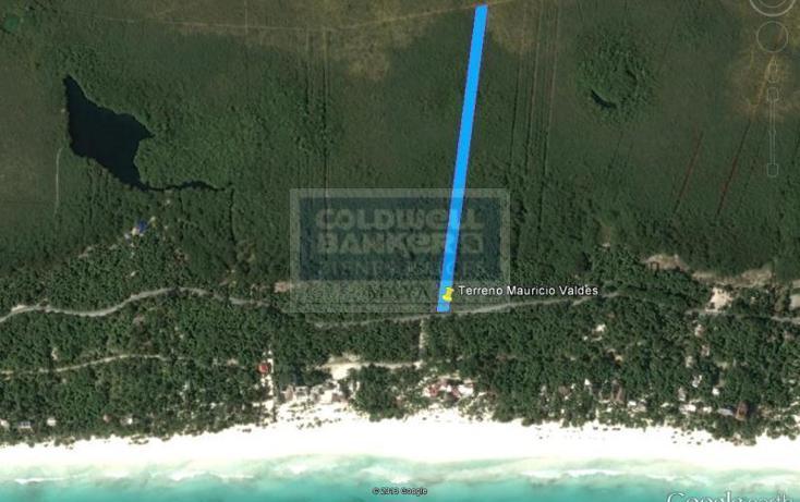 Foto de terreno comercial en venta en  , tulum centro, tulum, quintana roo, 1848532 No. 04