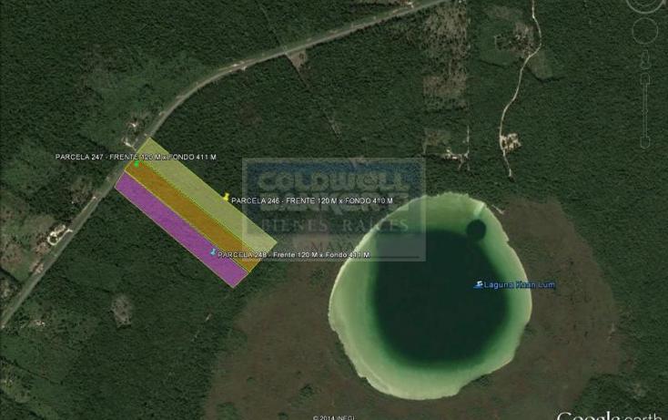 Foto de terreno comercial en venta en  , tulum centro, tulum, quintana roo, 1848544 No. 06