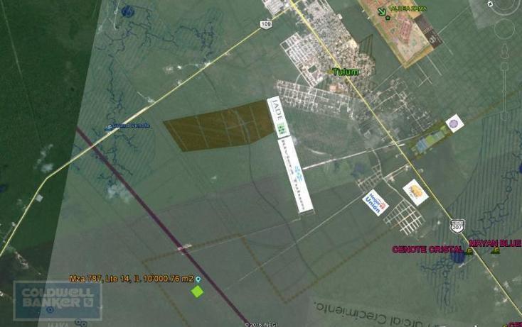 Foto de terreno comercial en venta en  , tulum centro, tulum, quintana roo, 1848550 No. 05