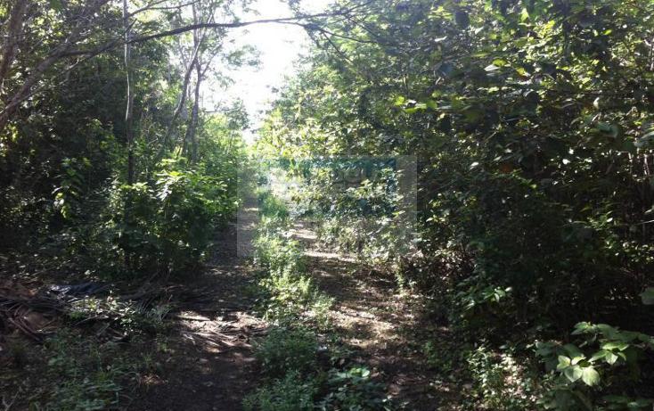 Foto de terreno comercial en venta en  , tulum centro, tulum, quintana roo, 1848882 No. 04
