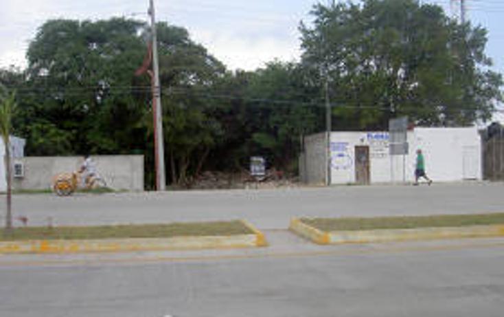 Foto de terreno habitacional en venta en  , tulum centro, tulum, quintana roo, 1862952 No. 02