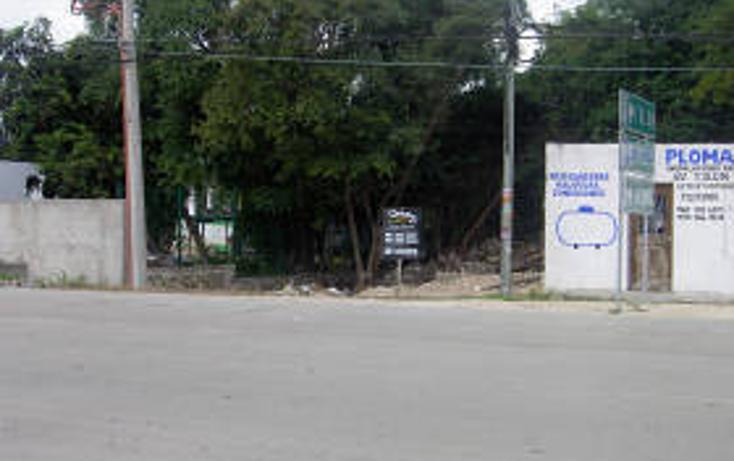 Foto de terreno habitacional en venta en  , tulum centro, tulum, quintana roo, 1862952 No. 03