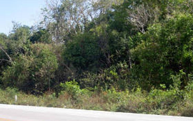 Foto de terreno habitacional en venta en  , tulum centro, tulum, quintana roo, 1862954 No. 01