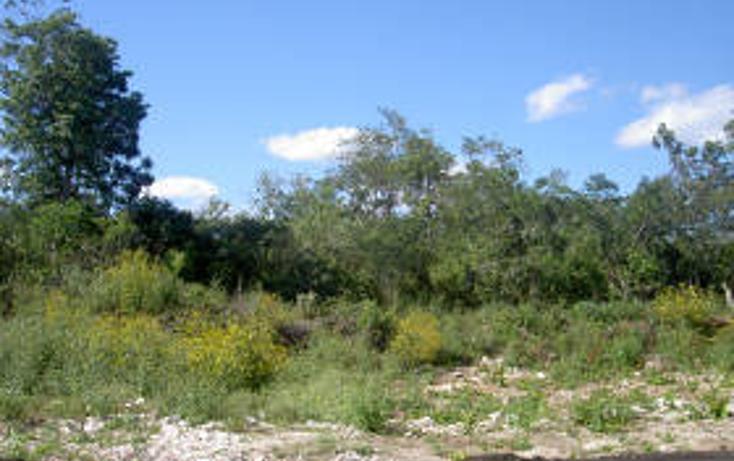 Foto de terreno habitacional en venta en  , tulum centro, tulum, quintana roo, 1862954 No. 03
