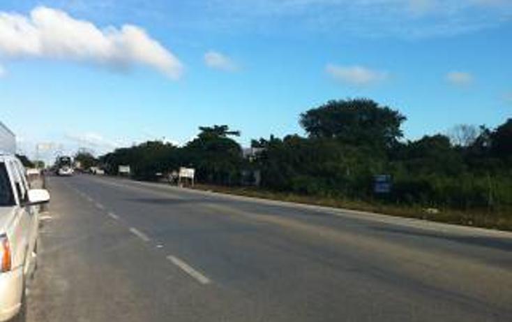 Foto de terreno habitacional en venta en  , tulum centro, tulum, quintana roo, 1862978 No. 08