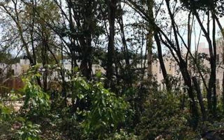 Foto de terreno habitacional en venta en  , tulum centro, tulum, quintana roo, 1862980 No. 19