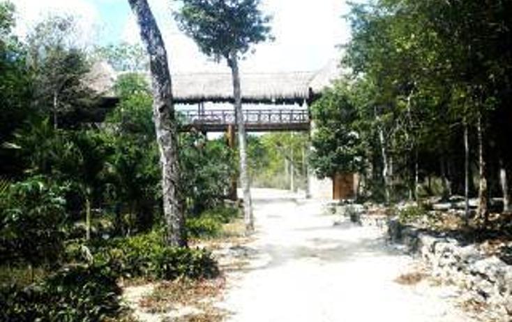 Foto de terreno habitacional en venta en  , tulum centro, tulum, quintana roo, 1862982 No. 04
