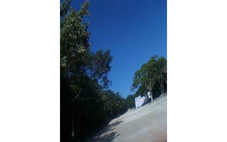 Foto de terreno habitacional en venta en  , tulum centro, tulum, quintana roo, 1863004 No. 08
