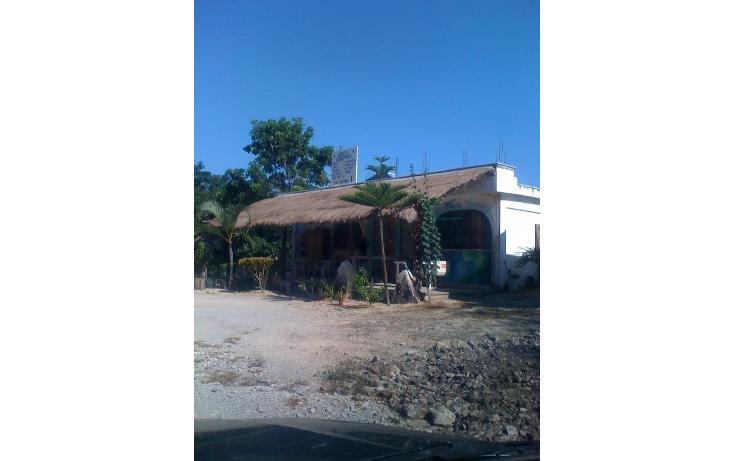 Foto de terreno habitacional en venta en  , tulum centro, tulum, quintana roo, 1863006 No. 09