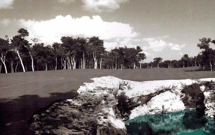 Foto de terreno habitacional en venta en  , tulum centro, tulum, quintana roo, 1863044 No. 05