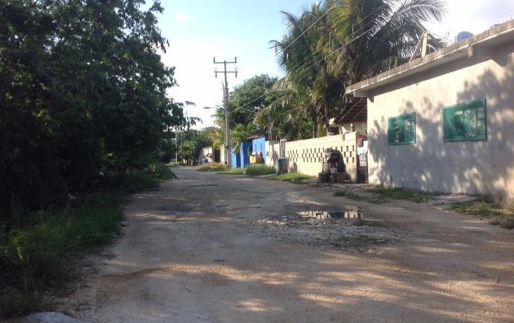 Foto de terreno habitacional en venta en  , tulum centro, tulum, quintana roo, 1893146 No. 05
