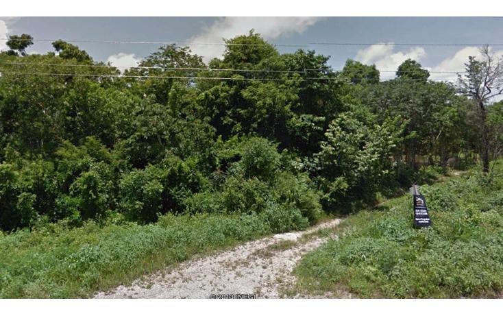 Foto de terreno habitacional en venta en  , tulum centro, tulum, quintana roo, 1962689 No. 03