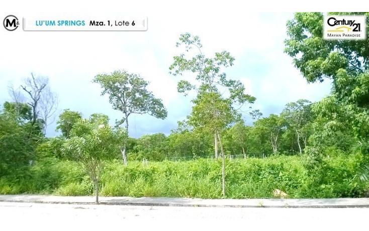 Foto de terreno habitacional en venta en  , tulum centro, tulum, quintana roo, 1962693 No. 07