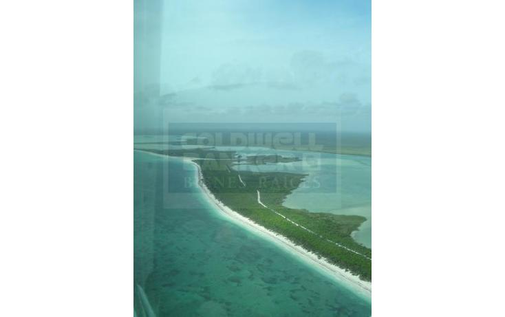 Foto de terreno comercial en venta en  , tulum centro, tulum, quintana roo, 2011810 No. 05