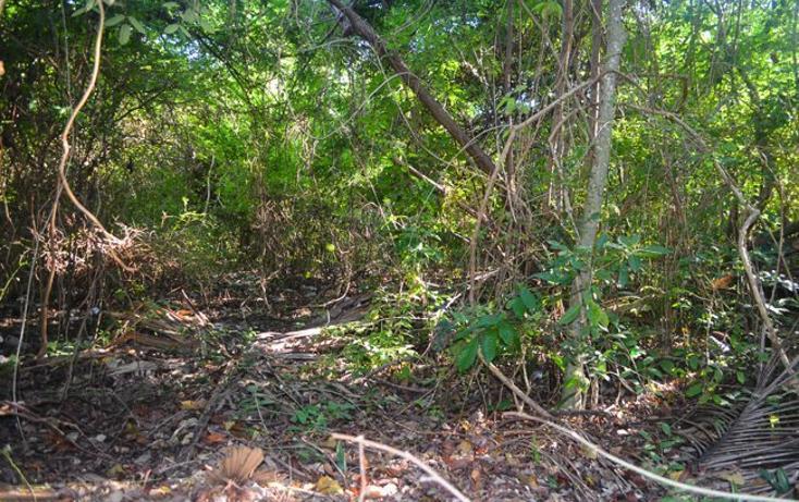 Foto de terreno habitacional en venta en  , tulum centro, tulum, quintana roo, 2033732 No. 01