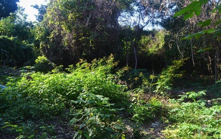 Foto de terreno habitacional en venta en  , tulum centro, tulum, quintana roo, 2033732 No. 02