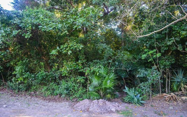 Foto de terreno habitacional en venta en  , tulum centro, tulum, quintana roo, 2033732 No. 05