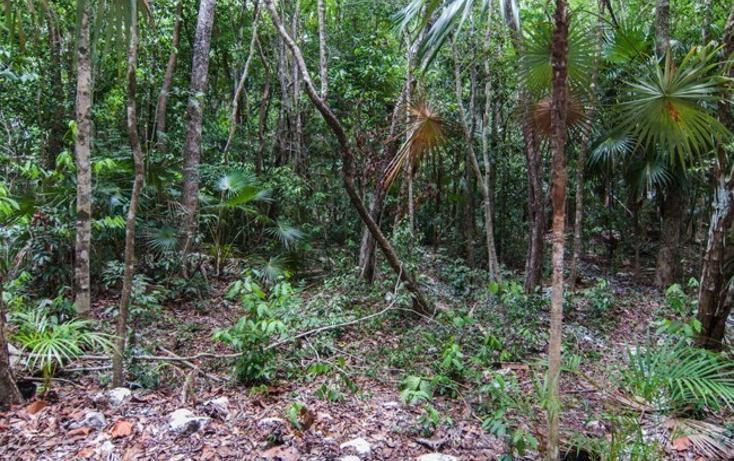 Foto de terreno habitacional en venta en  , tulum centro, tulum, quintana roo, 723949 No. 21