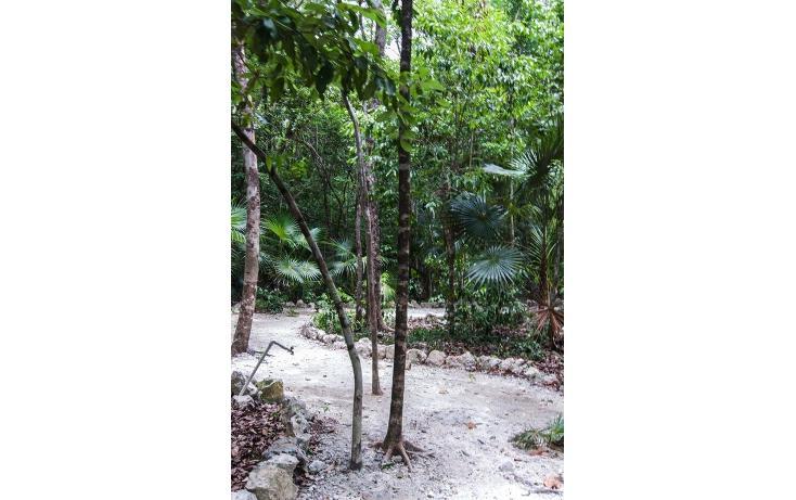 Foto de terreno habitacional en venta en  , tulum centro, tulum, quintana roo, 723949 No. 23