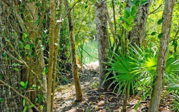 Foto de terreno habitacional en venta en  , tulum centro, tulum, quintana roo, 778271 No. 01