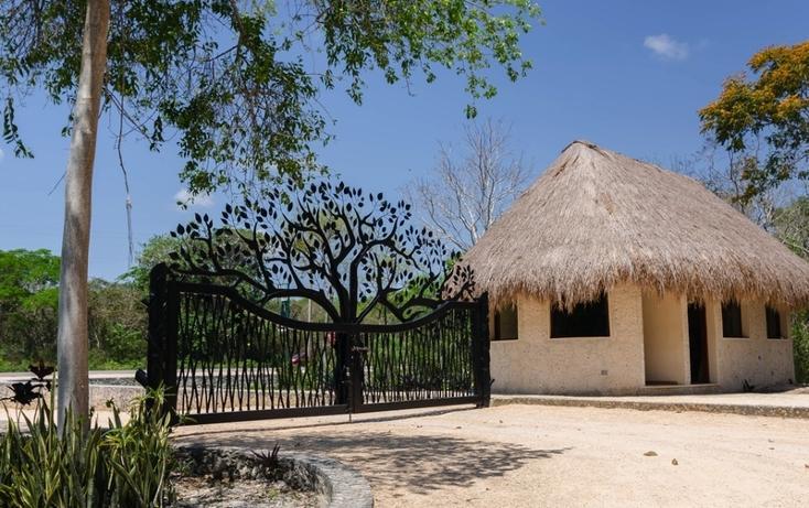 Foto de terreno habitacional en venta en  , tulum centro, tulum, quintana roo, 817819 No. 01