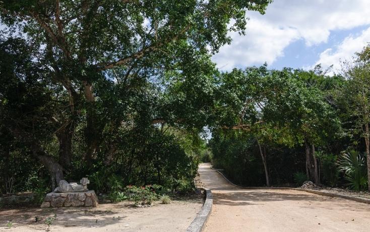 Foto de terreno habitacional en venta en  , tulum centro, tulum, quintana roo, 817819 No. 03