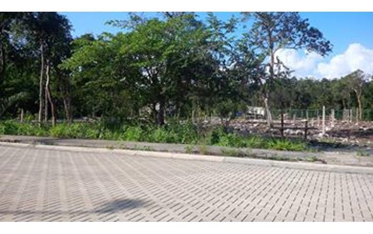 Foto de terreno habitacional en venta en  , tulum centro, tulum, quintana roo, 823669 No. 04