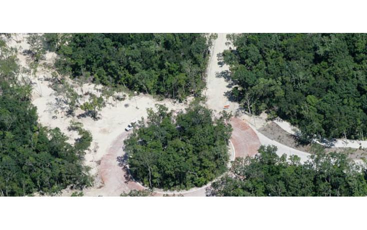 Foto de terreno habitacional en venta en  , tulum centro, tulum, quintana roo, 823669 No. 07