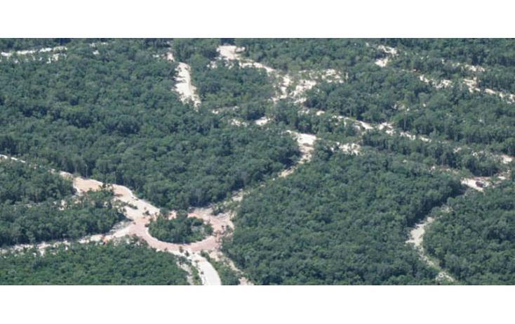 Foto de terreno habitacional en venta en  , tulum centro, tulum, quintana roo, 823669 No. 09