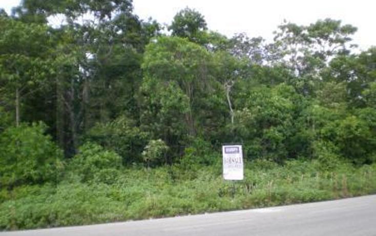 Foto de terreno comercial en venta en tulum-coba, kilometro 4.5 , tulum centro, tulum, quintana roo, 1836686 No. 02