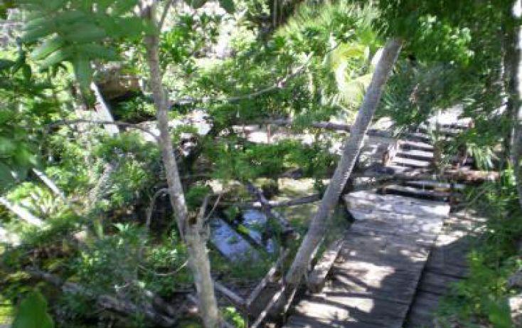 Foto de terreno habitacional en venta en tulumcoba, km 45, tulum centro, tulum, quintana roo, 929111 no 05