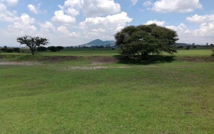 Foto de terreno habitacional en venta en  , tuna manza, san juan del r?o, quer?taro, 2025262 No. 07