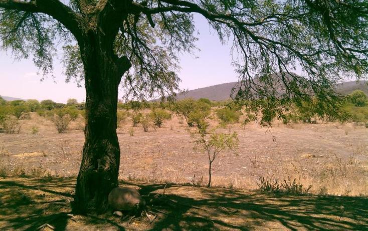 Foto de terreno comercial en venta en  , tunas blancas, ezequiel montes, querétaro, 443692 No. 03