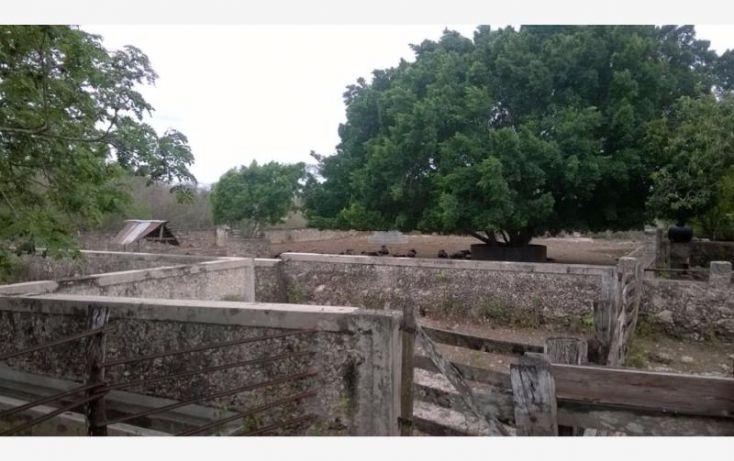 Foto de rancho en venta en, tunkas, tunkás, yucatán, 1755114 no 03