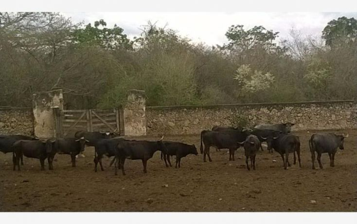 Foto de rancho en venta en, tunkas, tunkás, yucatán, 1755114 no 05